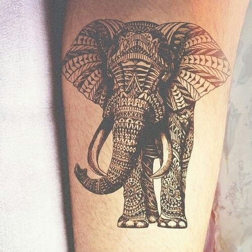 Elephant tattoo with lot's of detail!