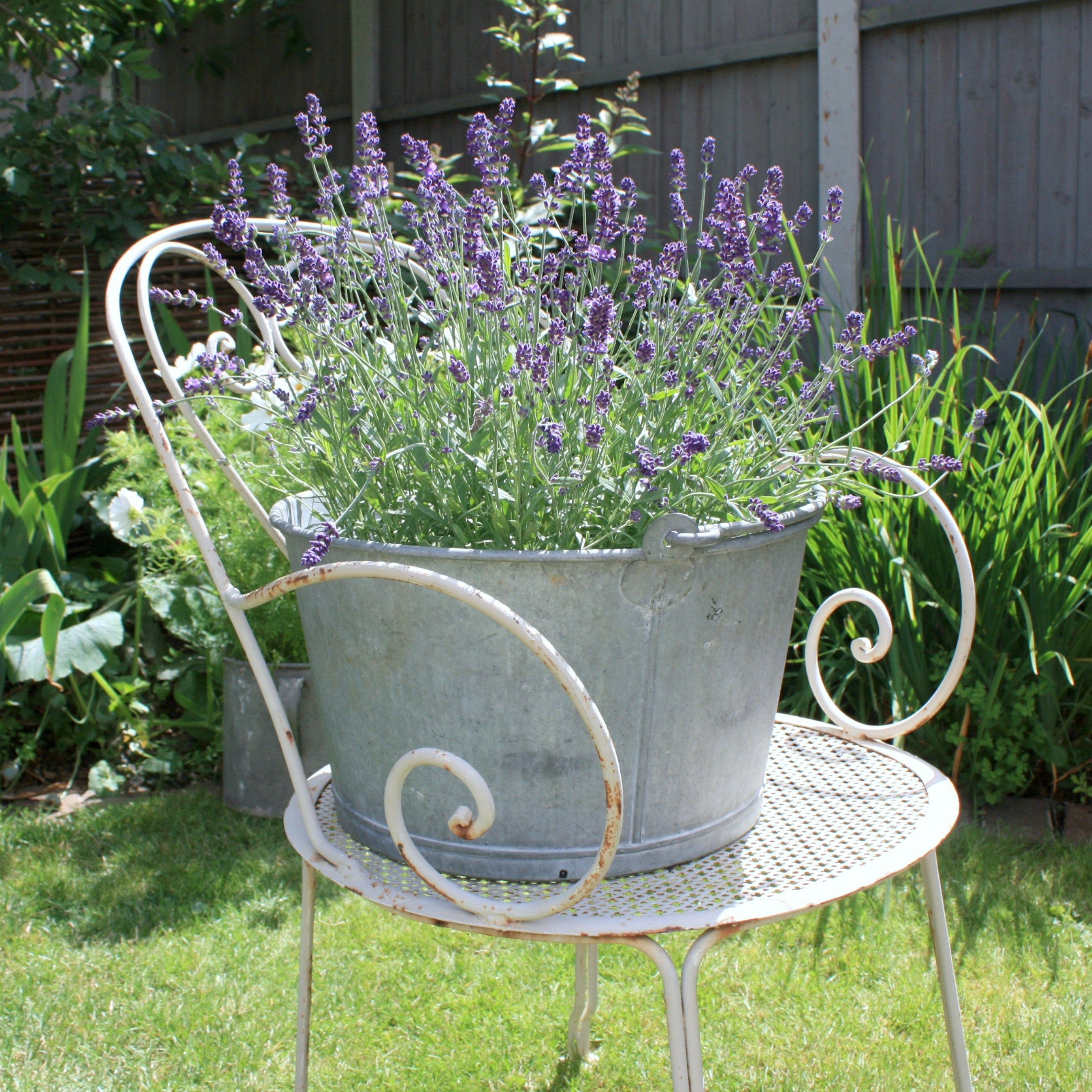 French vintage zinc or galvanised metal garden planter, French