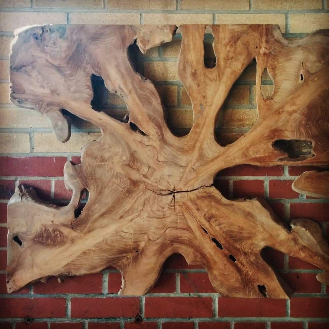 Teak Root Wall Art When Working With Salvaged Teak Roots The Possibilities Are Endless From End Tables And Coffee Salvaged Wood Organic Design Wall Hanging