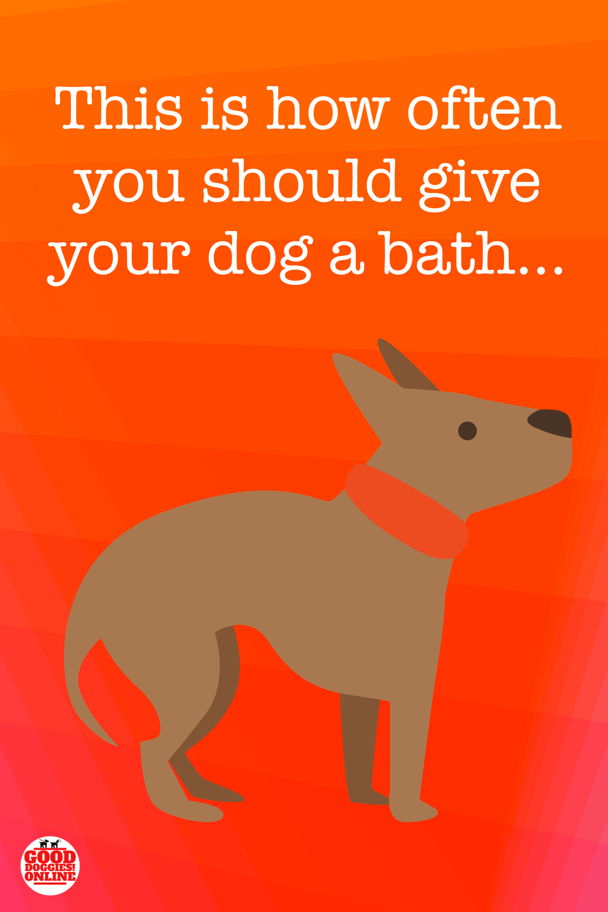 How Often Should You Bathe A Dog Check Out These Dog Care Tips And Find Out More Dogs Good Doggies Online Dogs Pet Parent