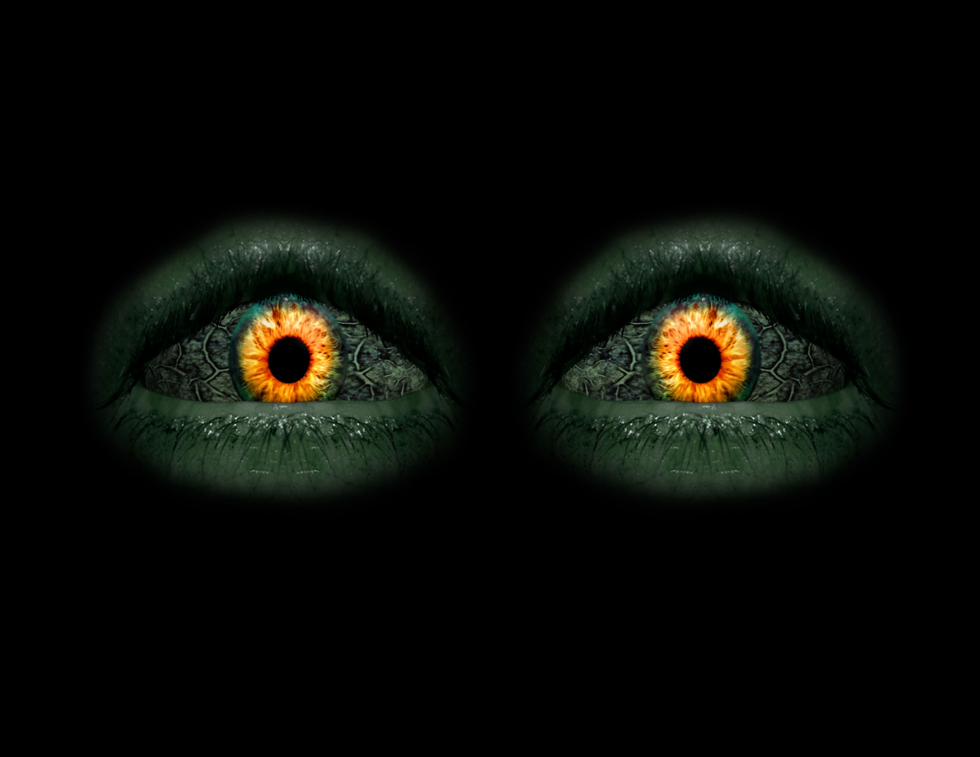 Ok, if these eyes were starring at me in the dark, I