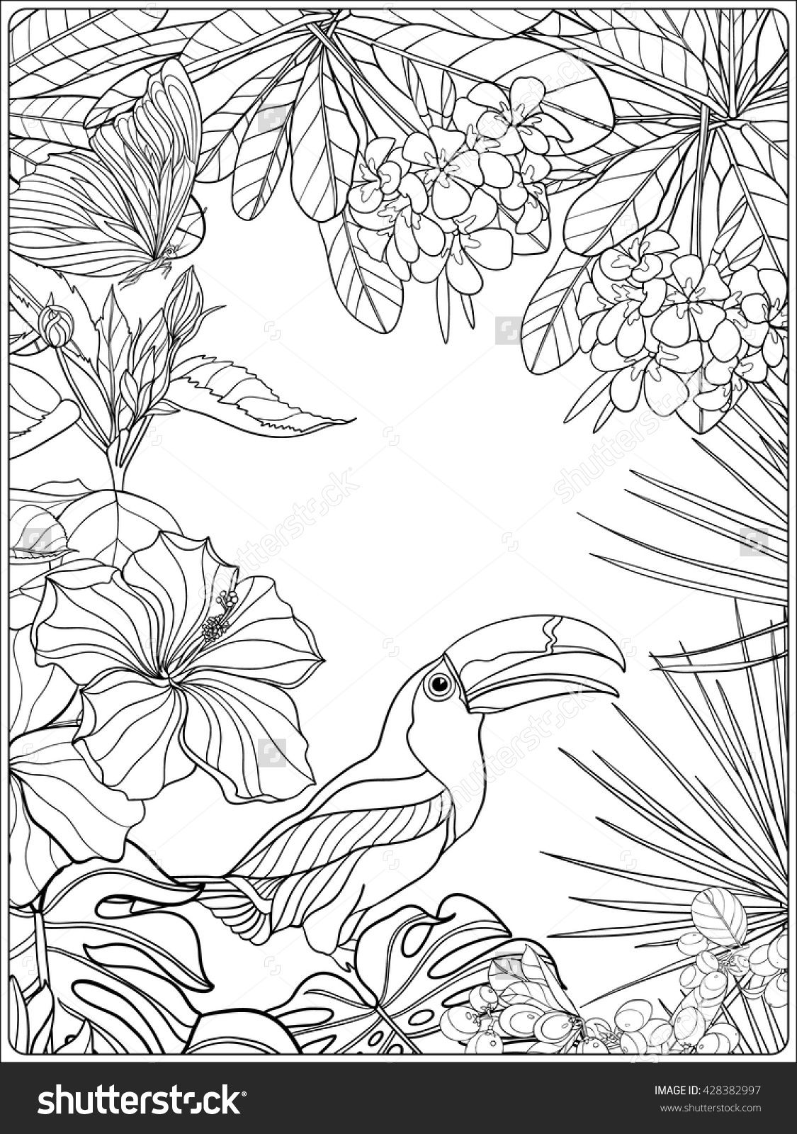 tropical bird coloring pages - photo#38