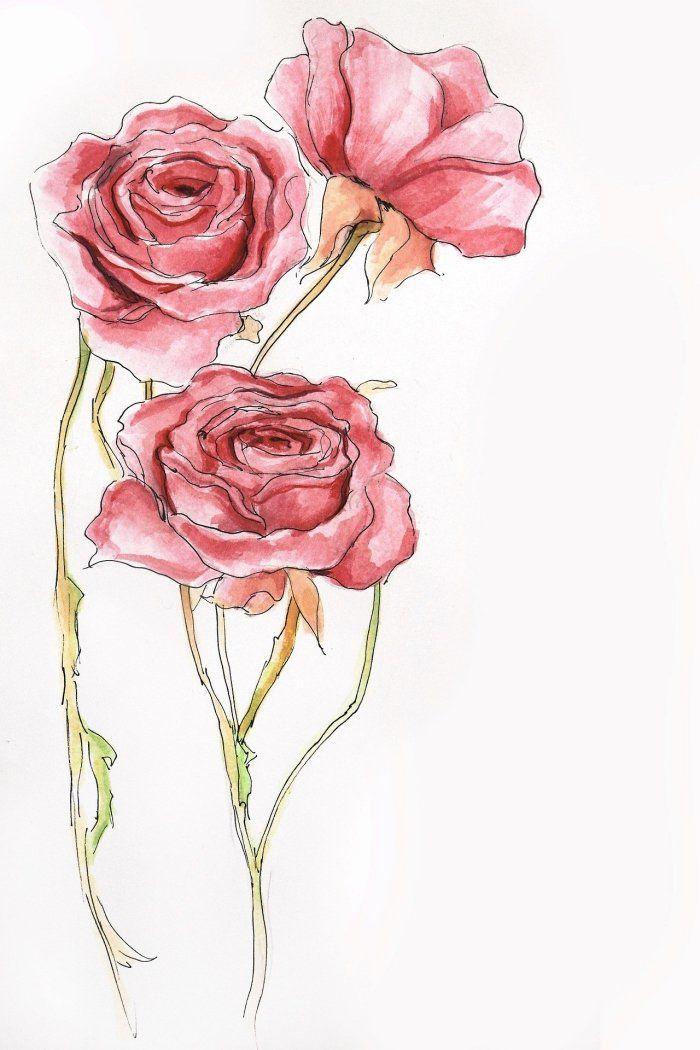 1001 + modèles et conseils pour apprendre comment dessiner une rose | Dessin rose, Comment ...