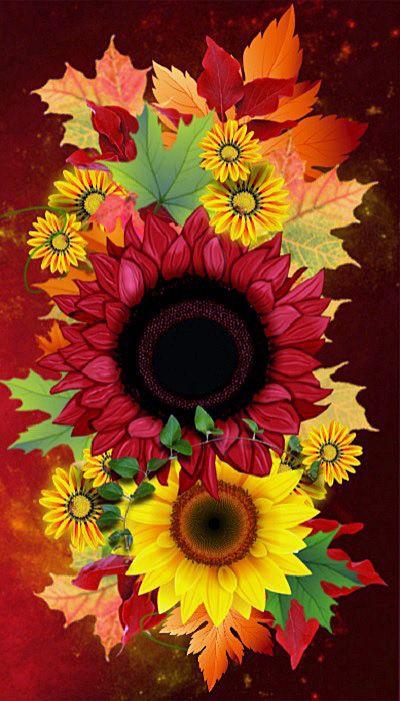 Pin Von Hambloch Moni Auf Blume Schmeterling Mit Bildern Hintergrundbilder Hintergrundbilder Iphone Sonnenblumen