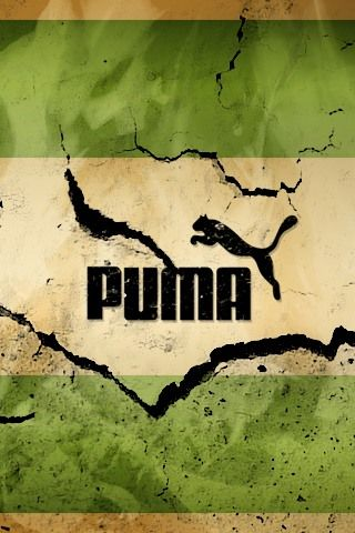 Puma Broken Wall IPhone Wallpaper Download