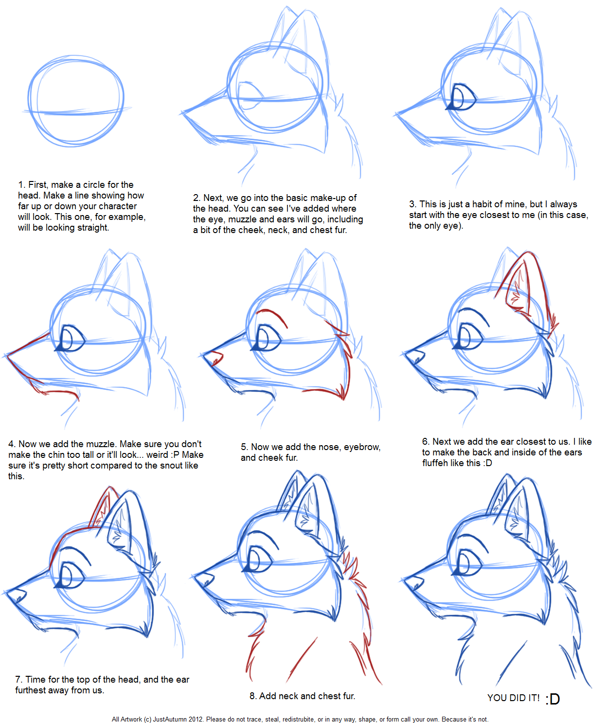 how_to_draw__canine_profile_tutorial_by_justautumnd4o12p3