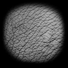 elephant skin | Alphas | Zbrush, Zbrush tutorial, Game textures
