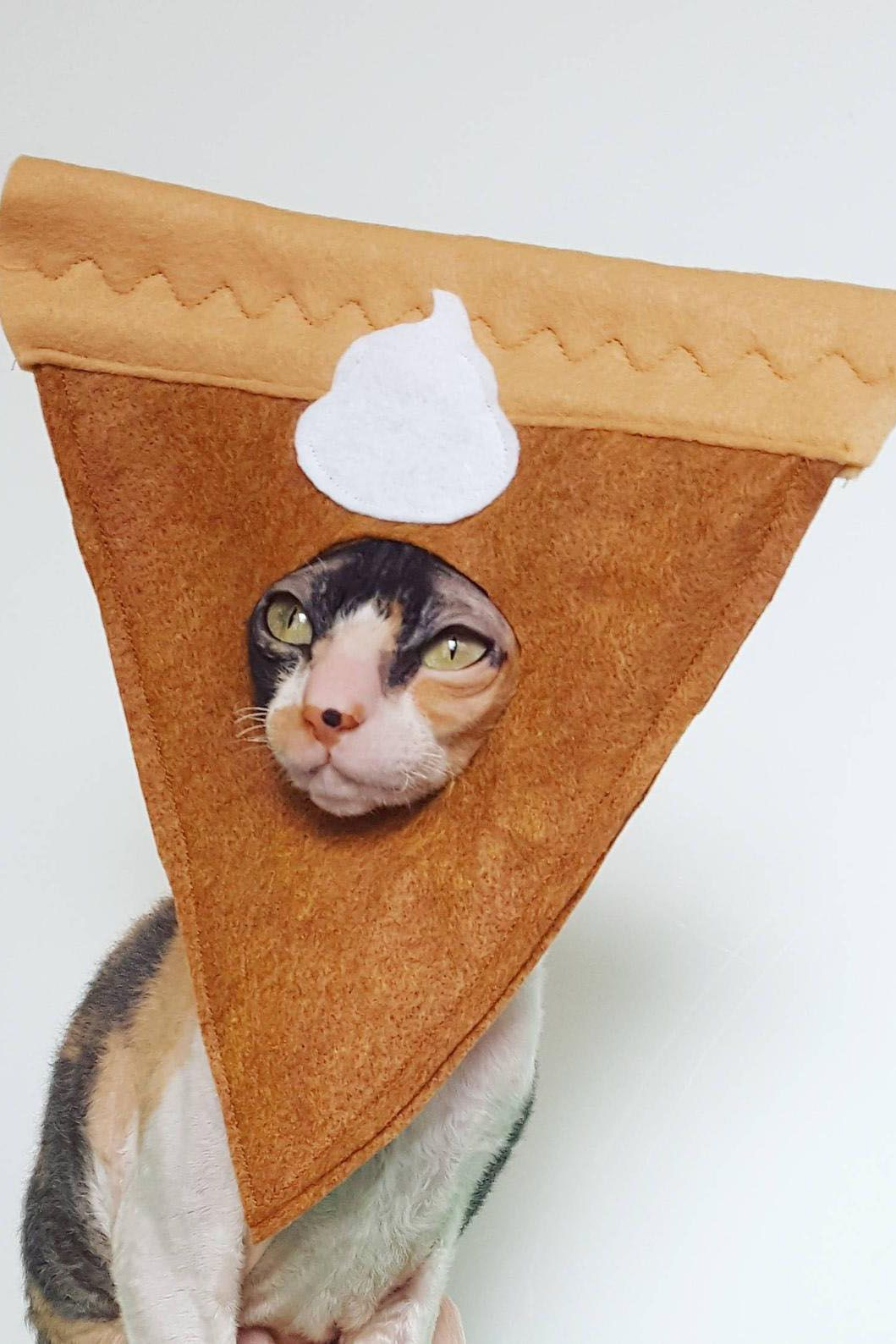 Pumpkin pie pet costume hat for dogs or cats. Carefully sewn so it can be enjoyed for many seasons and fun occasions, what is sweeter than your furry friend's cute face peeping out of a slice of pie? Made with soft brown felt, this hat features embellishments such as a scalloped stitch over the crust and a nice sized dollop of bright white whipped cream stitched securely onto the costume. Simply place the costume on your pet by gently easing their face through the costume hole.