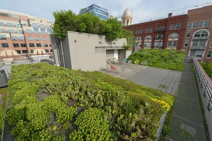 retention – Landscape Architecture Magazine