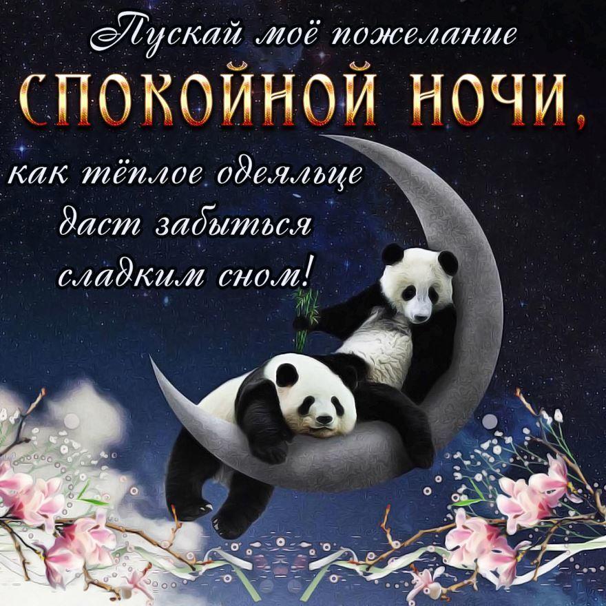 Спокойной ночи дорогая картинки смешные, для
