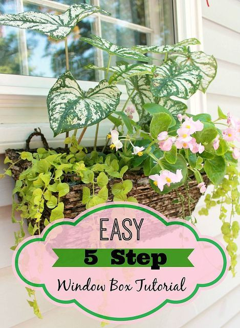 easy 5 step window box tutorial, container gardening, flowers, gardening, how to, windows