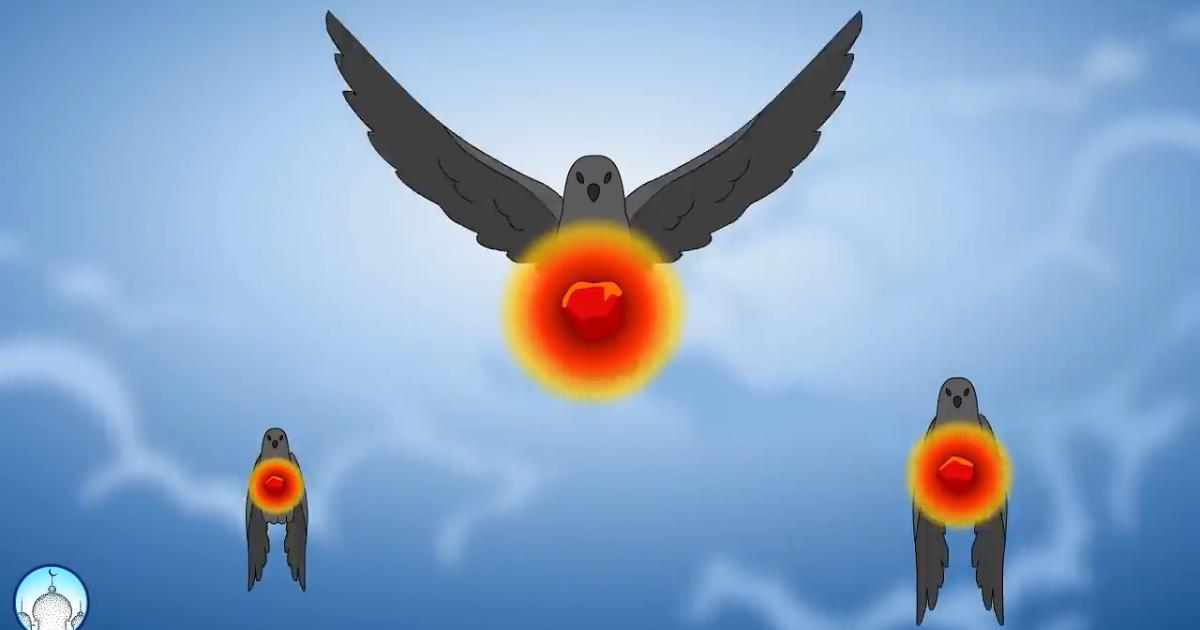 Fantastis 30 Gambar Kartun Burung Ababil Kisah Burung Ababil Menghancurkan Pasukan Gajah Kartun Download Viral Penampakan Buru Di 2020 Gambar Kartun Gambar Kartun