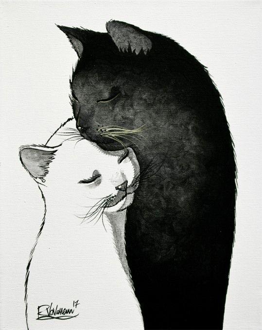 černá kočička ebony.com volný přístup k gay porno