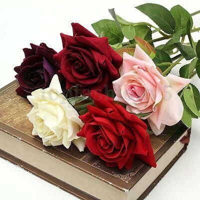 Вельвет роуз в латексе, русское порно стоячая грудь