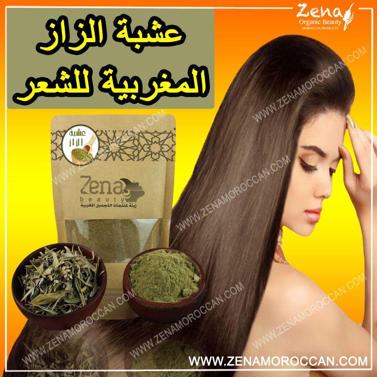 عشبة الزاز المغربية للشعر Herbs For Hair Hair Acne