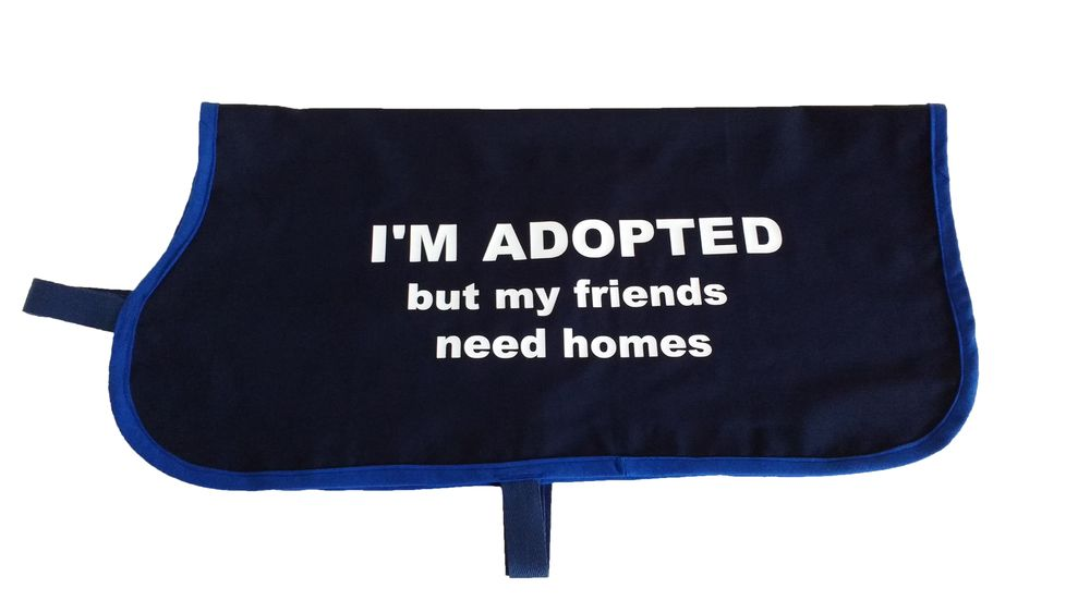 """""""I'm Adopted but my friends need homes"""" Rescue dogs"""