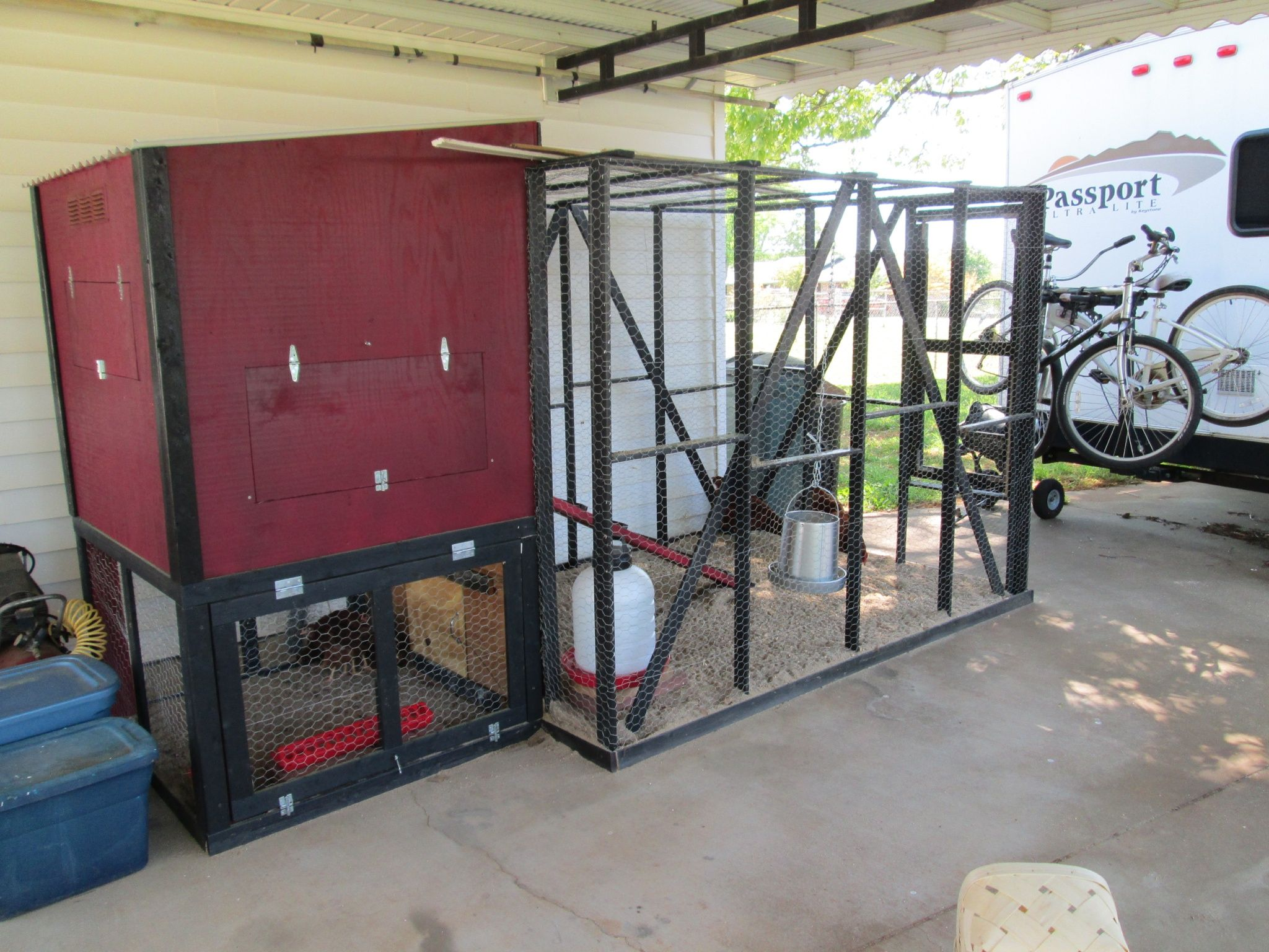 Coop and pen for 6 Rhode Island Red hens. My first experience with chickens.