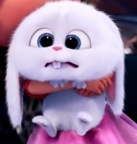 Favorite Part In The Secret Life Of Pets Hewan Hewan Lucu Kartun