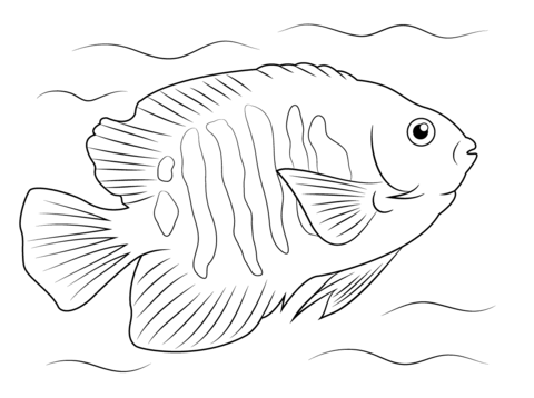 Good Website For Printable Ocean Life No Need To Download A Pdf Fish Coloring Page Fish Drawings Animal Coloring Pages