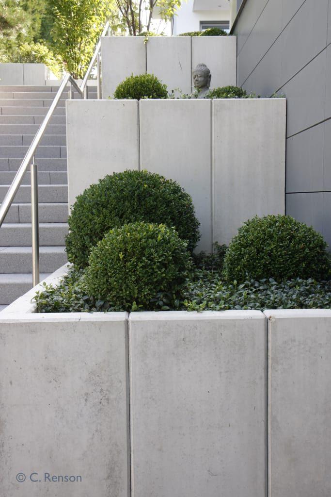 Terrassierte beete neben treppenaufgang moderner garten von dirlenbach - garten mit stil modern | homify #modernegärten