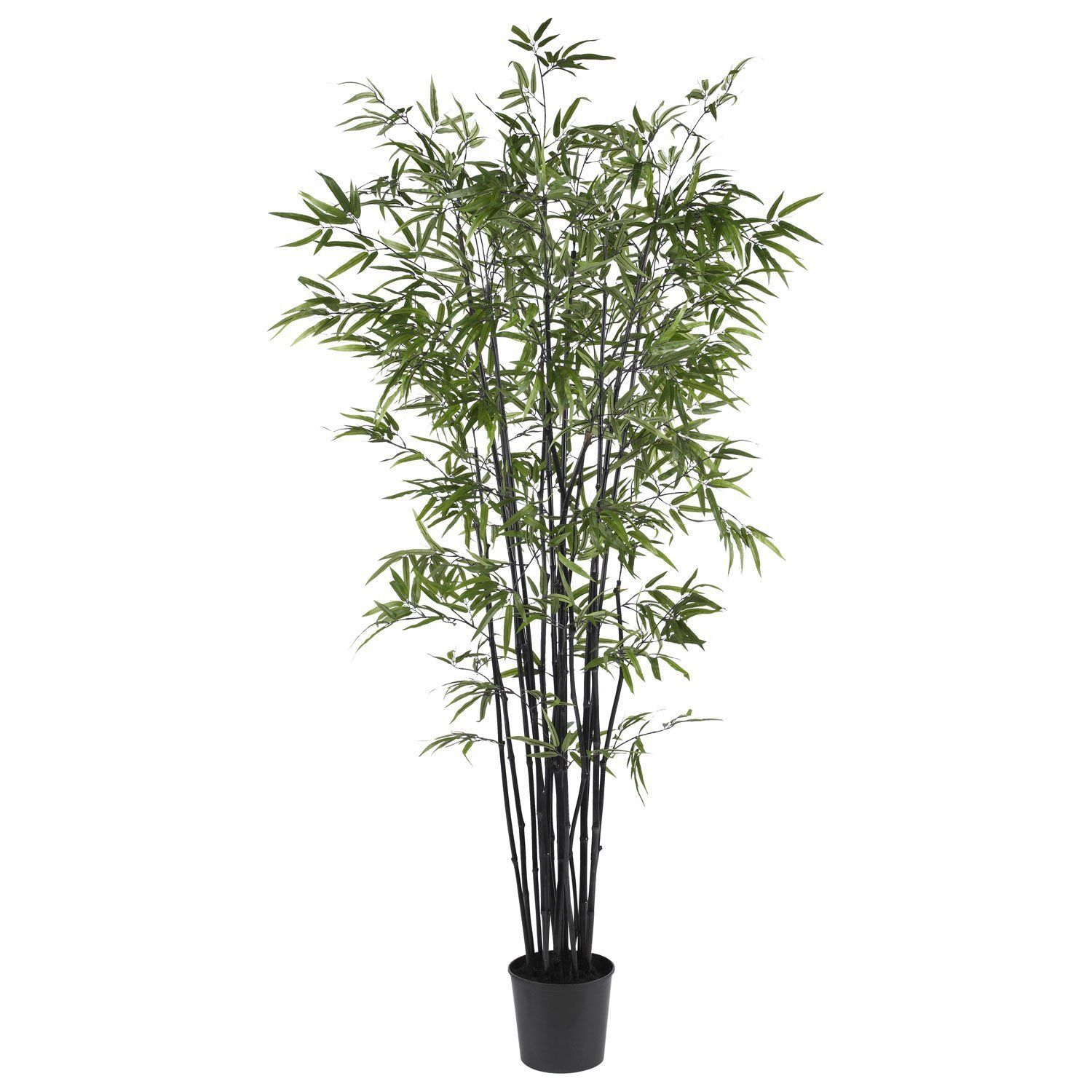 6.5' Black Bamboo Silk Tree * Find out more about the great product at the image…