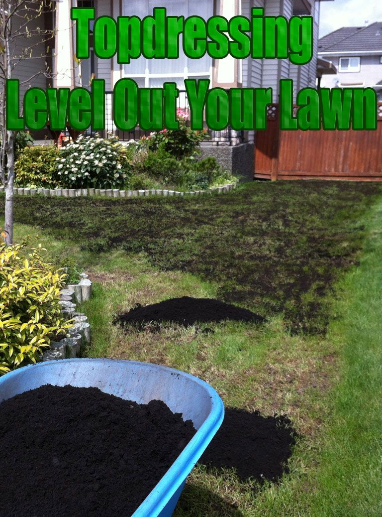 topdressing level out your lawn lawn gardens and yards
