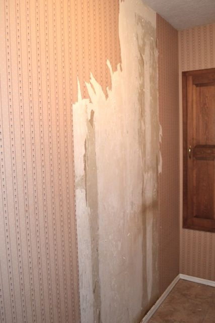 Yes You Can How To Remove Wallpaper From Unprimed Drywall Removable Wallpaper Wallpaper Home Decor