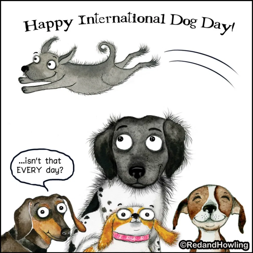International Dog Day