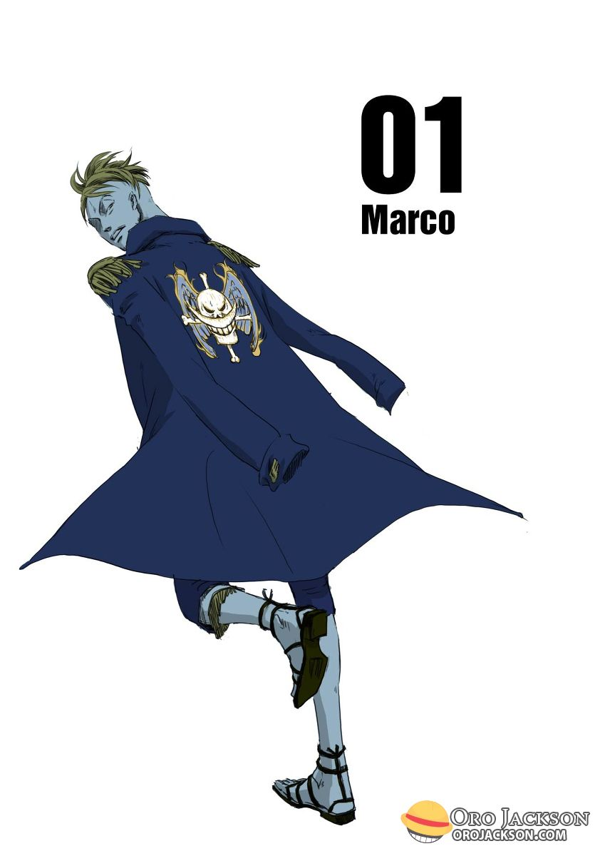 The first division commander of the Whitebeard Pirates… MARCO!
