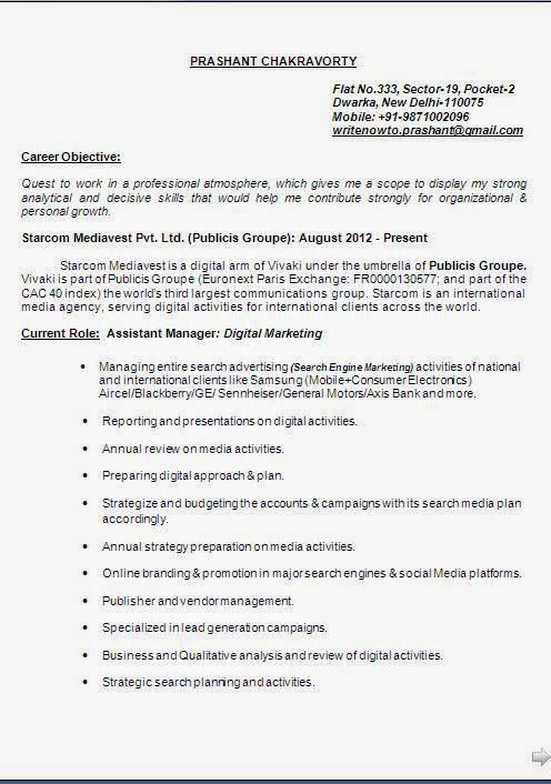 cv form doc Beautiful Excellent Professional Curriculum Vitae - new marketing agency blueprint free download