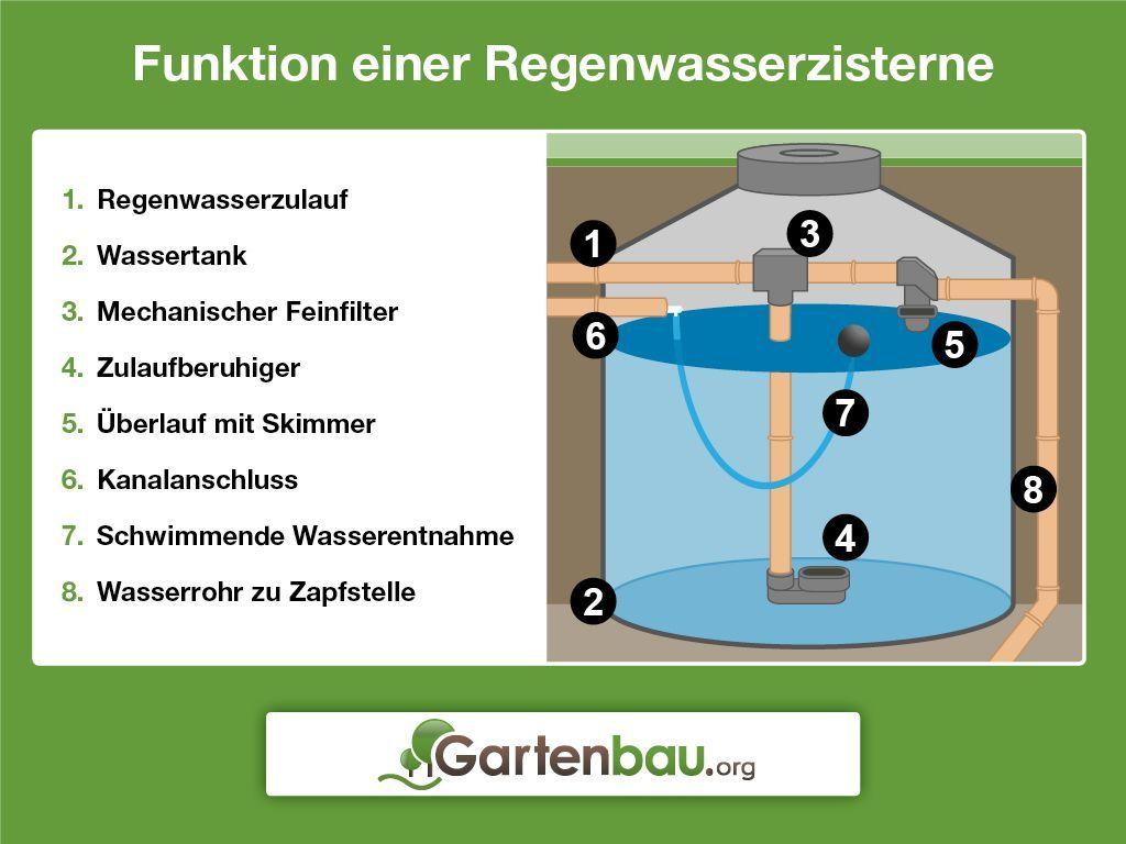 Regenwasserzisterne Aufbau Und Funktion Vorbereitungen Und Einbau Material Und Passende Grosse Pflege Und Reinigung Zisterne Wassertank Garten Wassertank