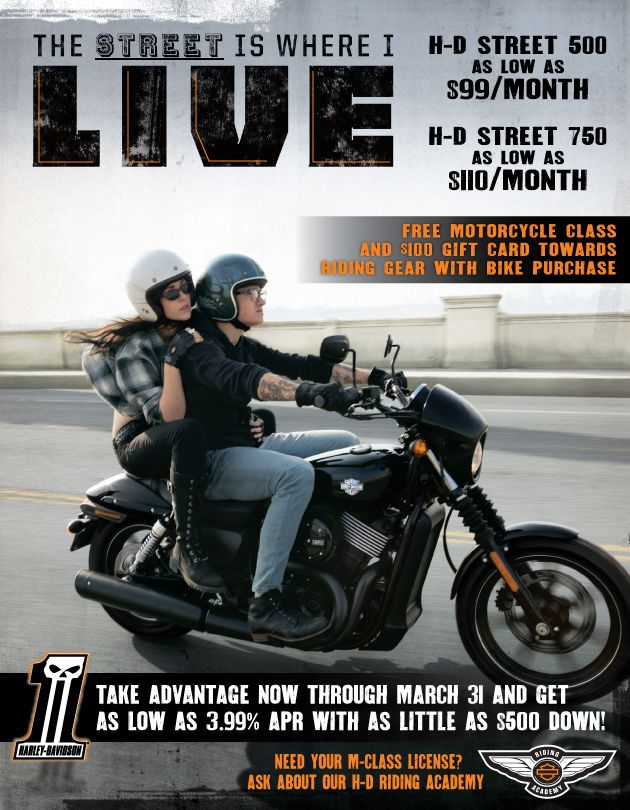 Own A New Harley Davidson For As Little As 4 Per Day Harley Davidson Harley Davidson Dealers New Harley Davidson
