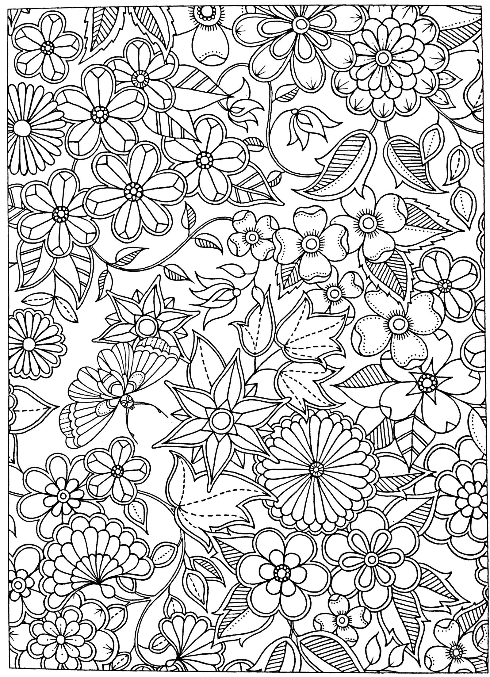 Free adult coloring page Secret Garden Flower coloring