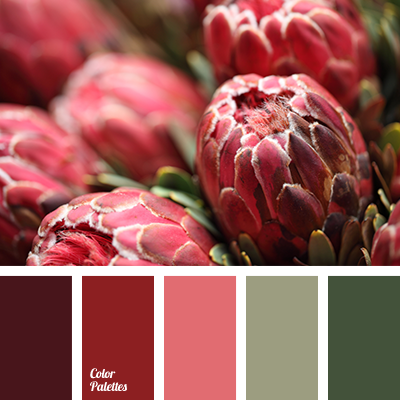 Color Palette 2644 Maroon Color Palette Color Palette Red