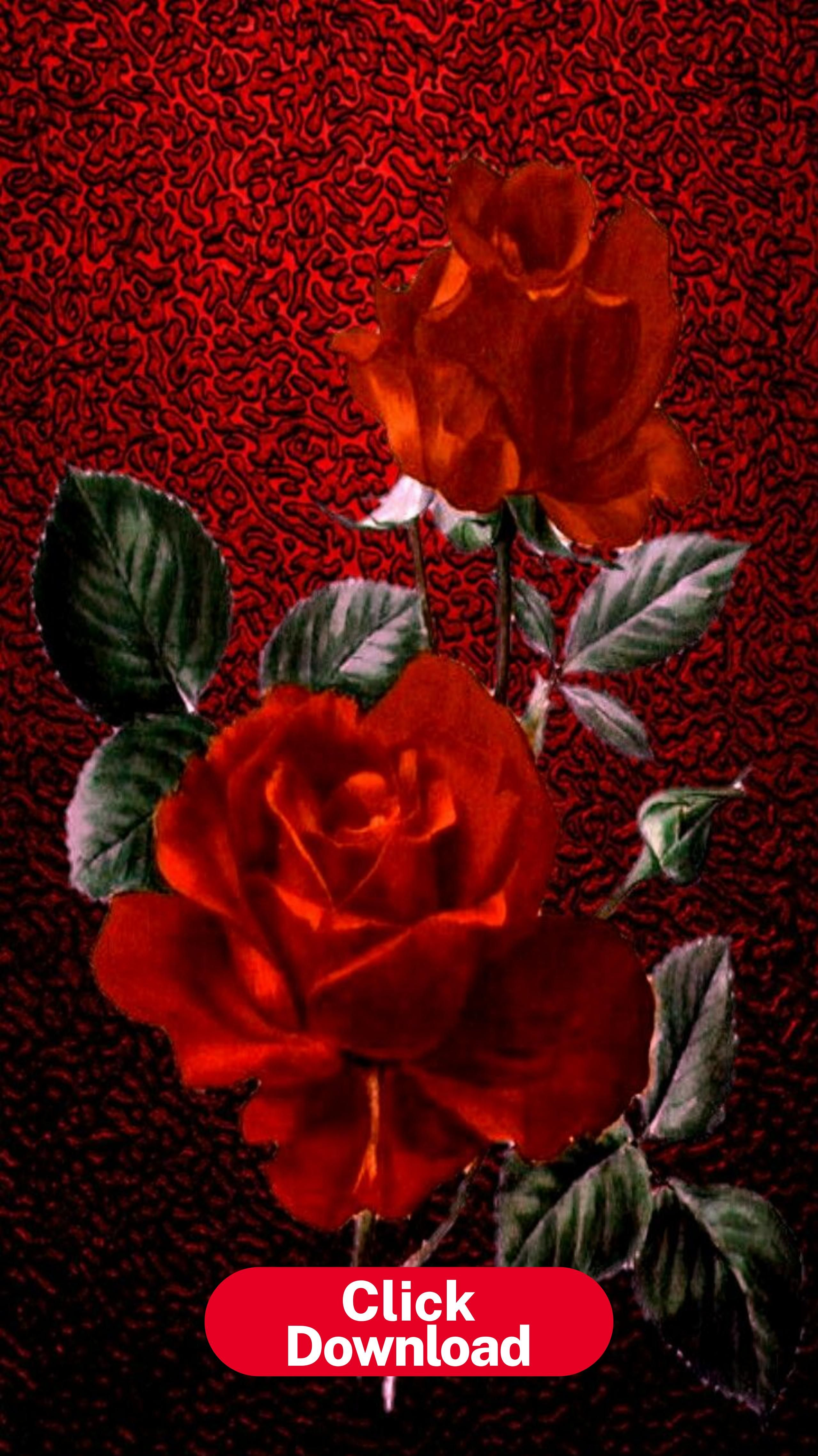 Iphone Vertical Wallpaper Red Roses Vintage Print On Fed Sparkle Wallpaper Iphone Roses Flower Phone Wallpaper Beautiful Flowers Wallpapers