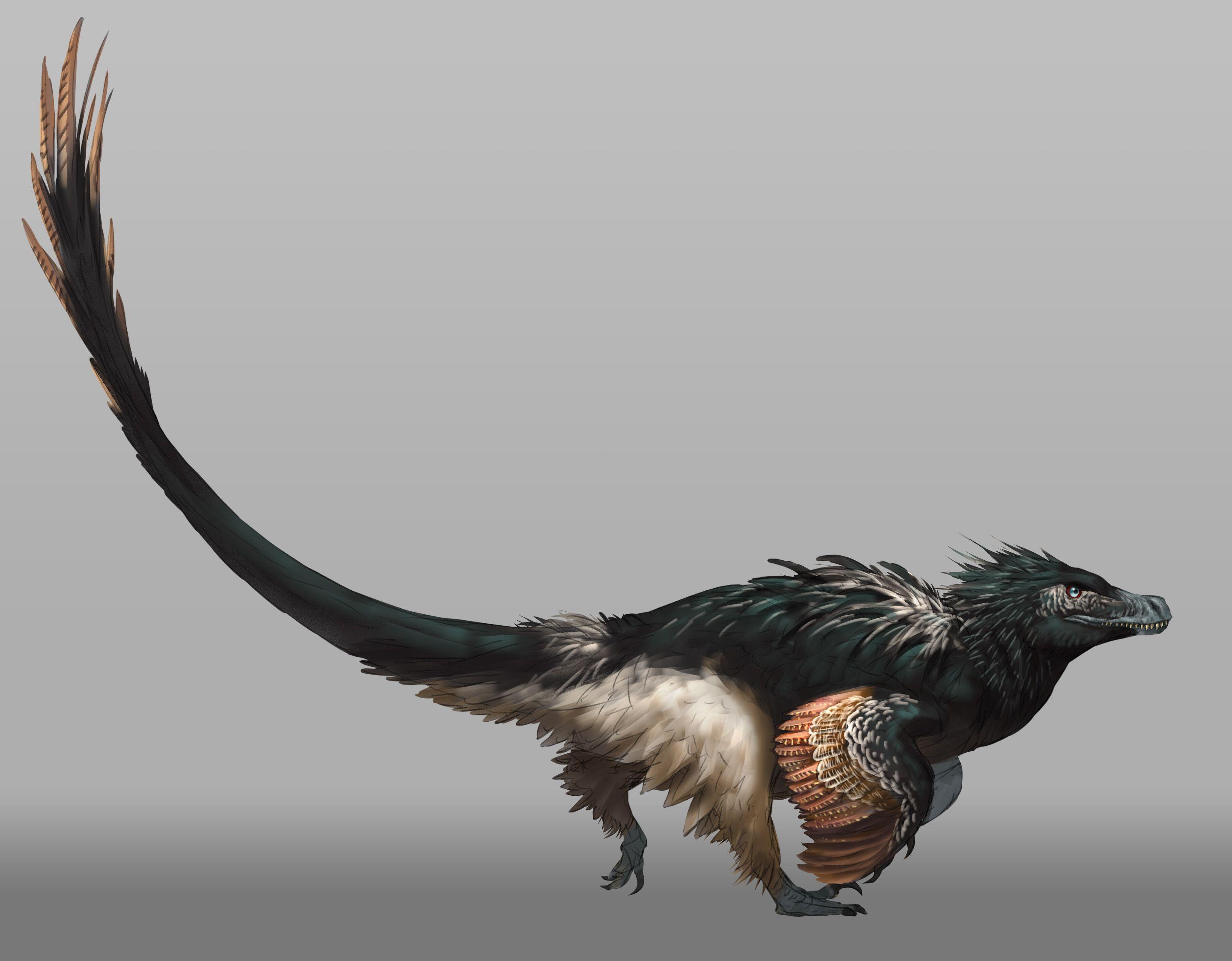 5000 milestone Acheroraptor reveal » Saurian