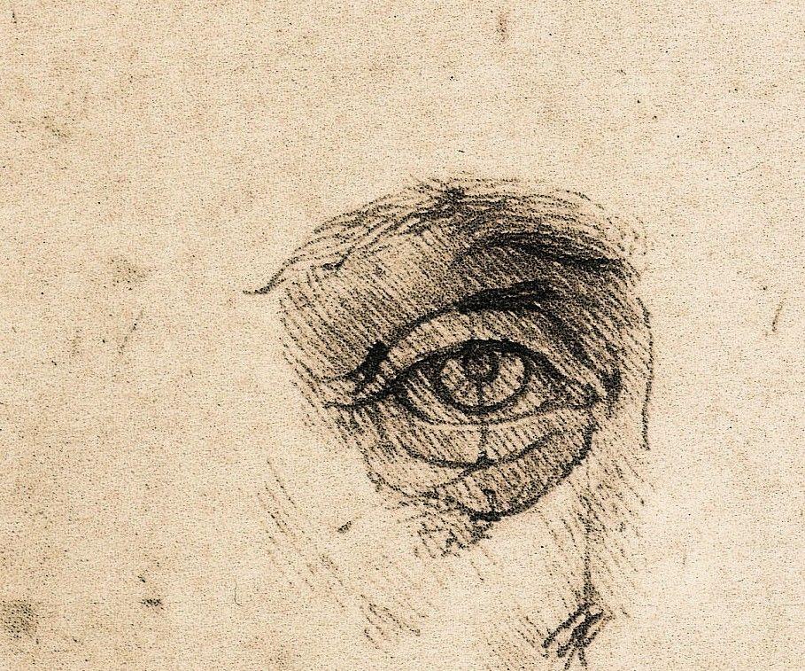 Image result for leonardo da vinci eye drawing