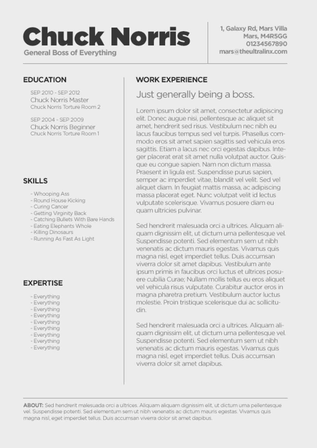 Minimal CV / Resume Template PSD Download Resume