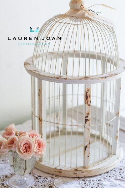 Lauren Joan Photography Vancouver Bc Based Photographer Guelph