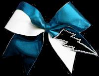 I <3 cheer bows!!