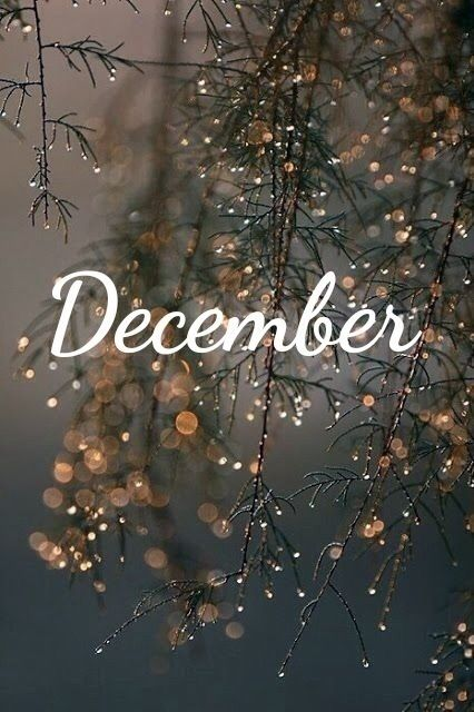 Image about winter in Years / Months / Christmas /