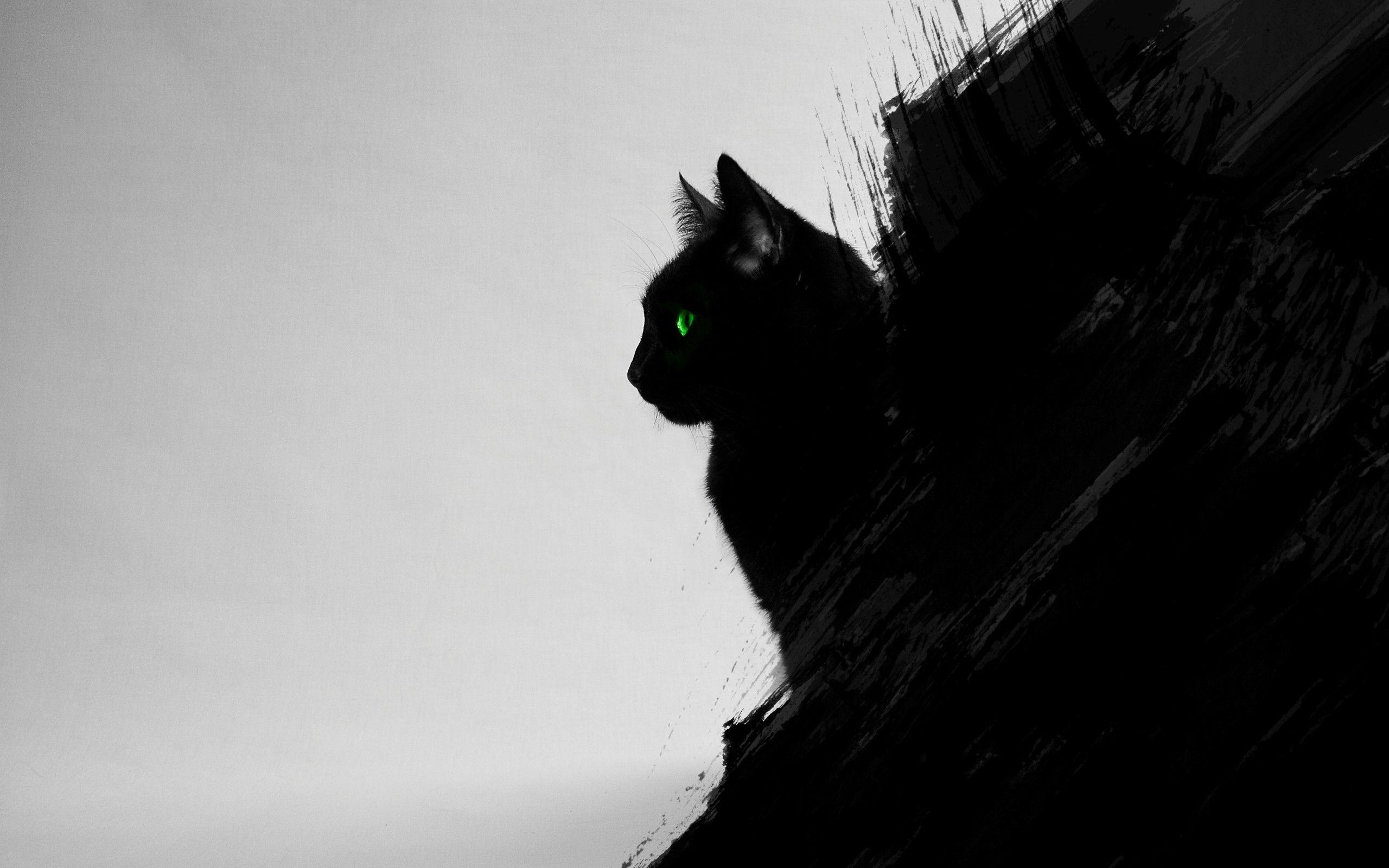 Download Hd Wallpapers Of 184571 Cat Black Cats Animals Green Eyes Artwork Digital Art Black Gray Free Download Hi Black Cat Art Eyes Artwork Black Cat