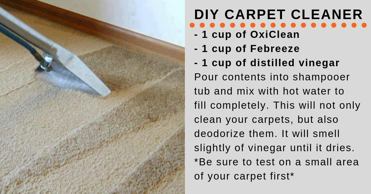 Carpet Your Life