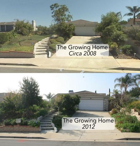 dd80b9a925a8a9ec503faf4734b25bd0 - What Is The Importance Of Urban Gardening