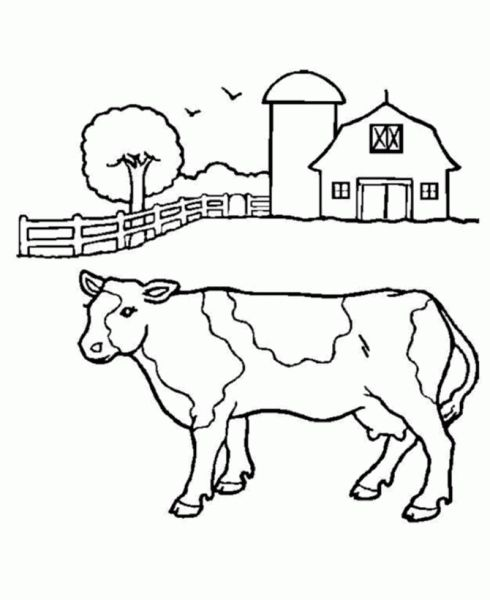 The Best cow coloring pages free - http://coloring.alifiah.biz/the ...