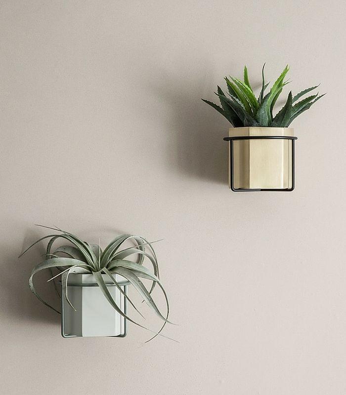 support mural de pot de fleur noir plantes suspendues plantes sur les murs et plante interieur