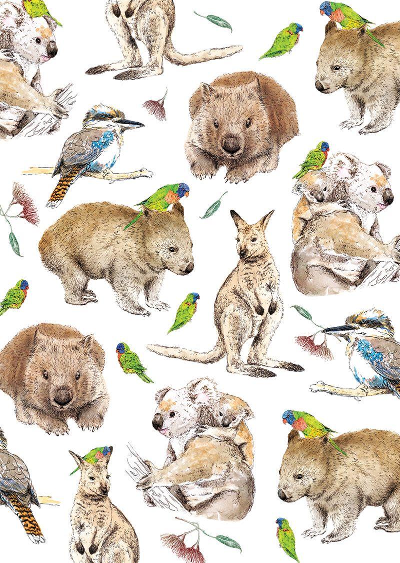 Australia On My Mind in 2020 Australian animals, Animal