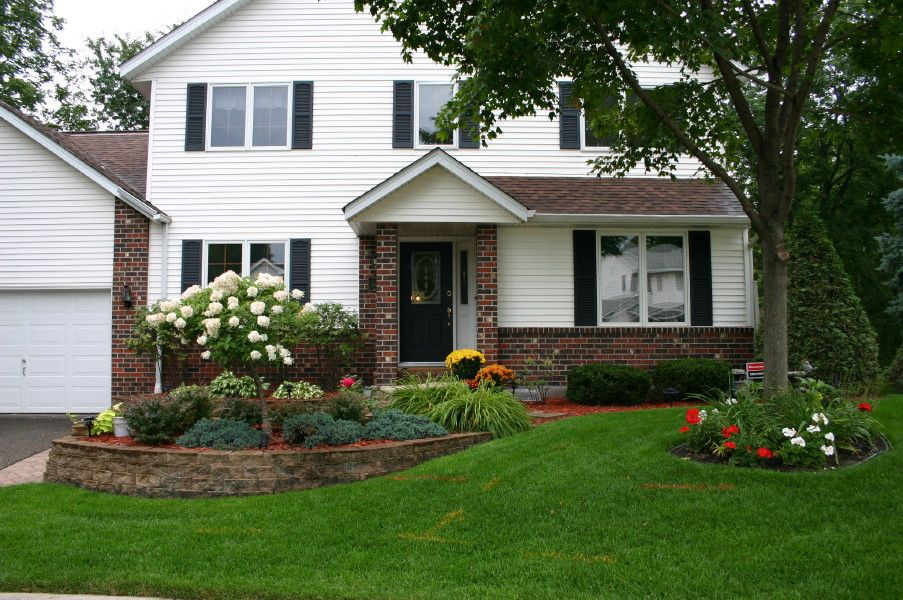Foundation plantings for front of house tree hydrangea for Foundation planting plans