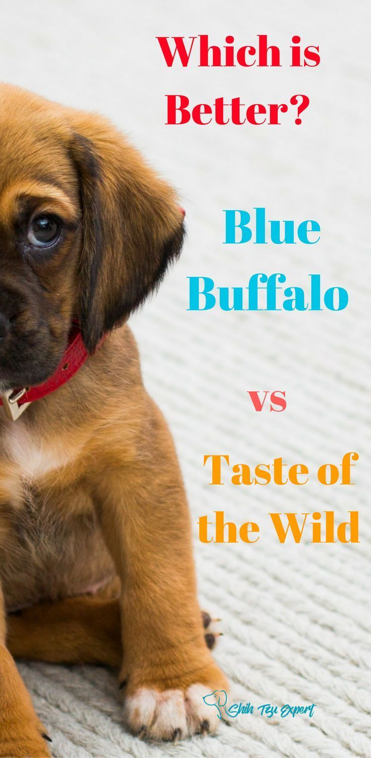 Blue buffalo vs taste of the wild why choose one over the