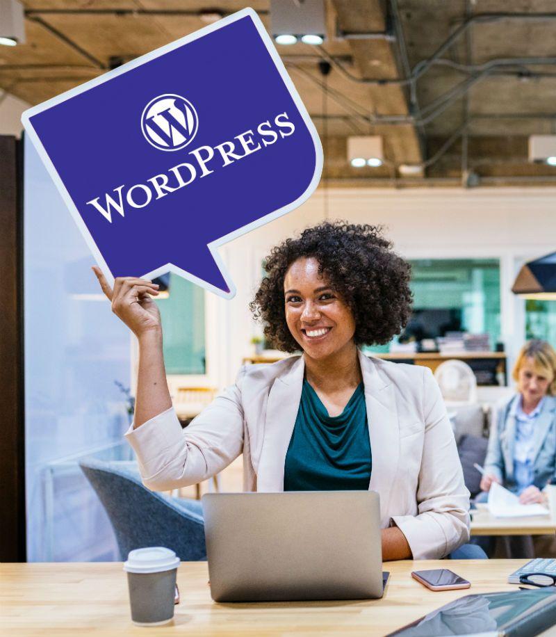 Wordpress Web Design Hobart